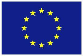 EU Flaggeklein